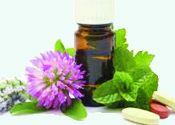 Natural Herbal Remedies and Supplements